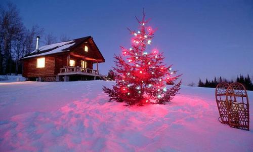Новогодние праздники 2013
