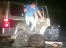 Молодые люди на Сахалине пытались раздавить медведя на джипе